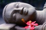 buddha-smile